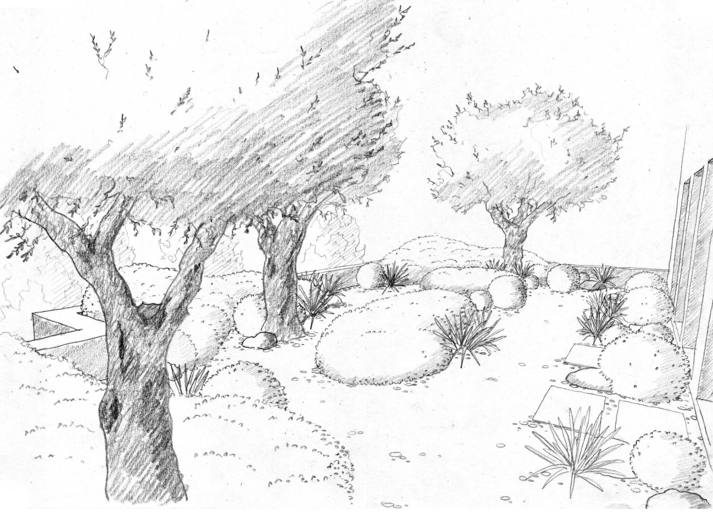 Line Art Nature : Landscape drawings renate s pinterest