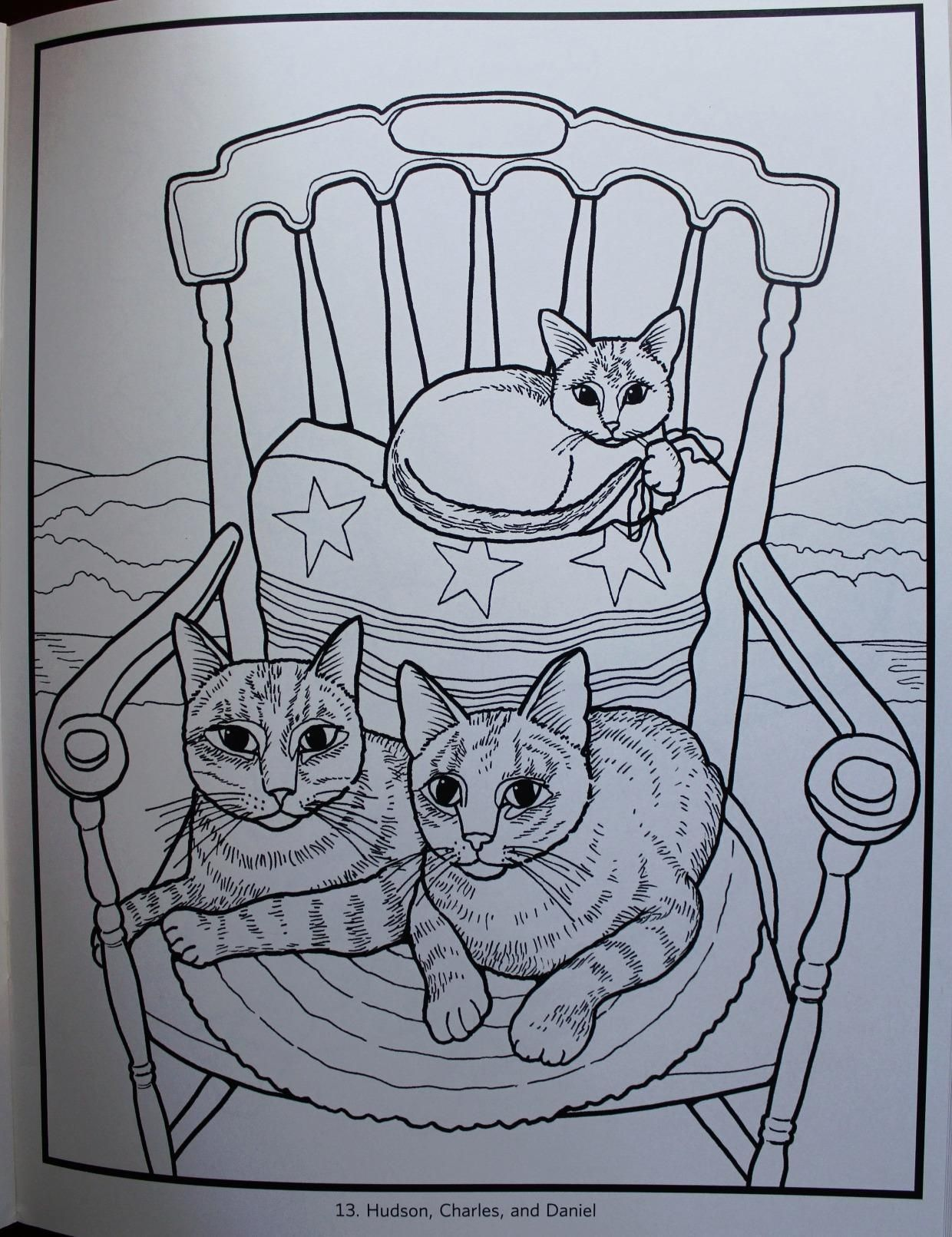 Mimi Vang Olsen Cats Coloring Book Inc Pomegranate Communications 9780764959806 Amazon