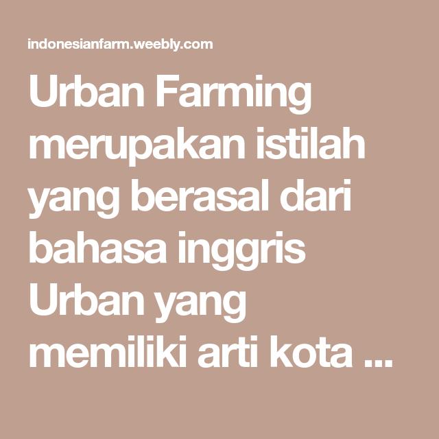 Urban Farming Merupakan Istilah Yang Berasal Dari Bahasa Inggris Urban Yang Memiliki Arti Kota Atau Perkotaan Dan Farming Yang Berarti Perta Petani Kota Bahasa