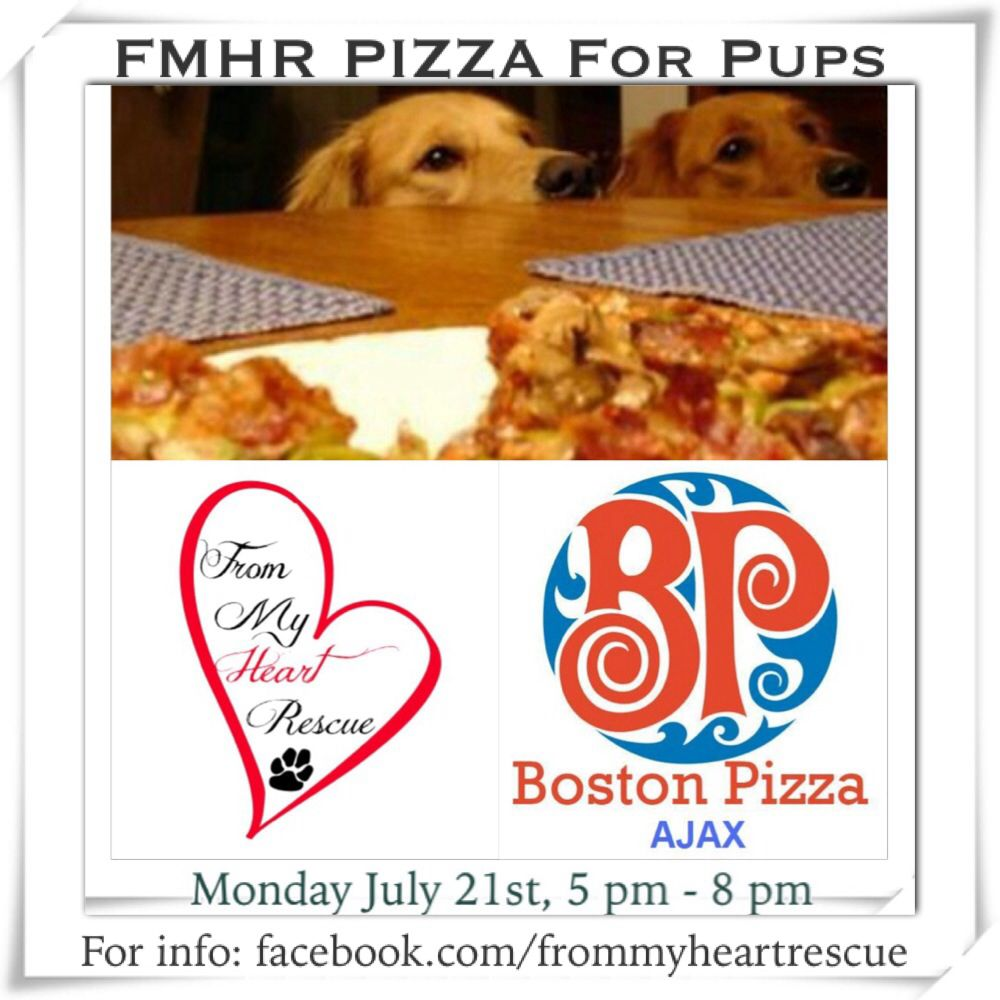 Please Pin Tomorrow Is Our Pizza For Pups Event Https Www Facebook Com Events 495017390644949 Info Fost Animal Hospital Foster To Adopt Fundraising