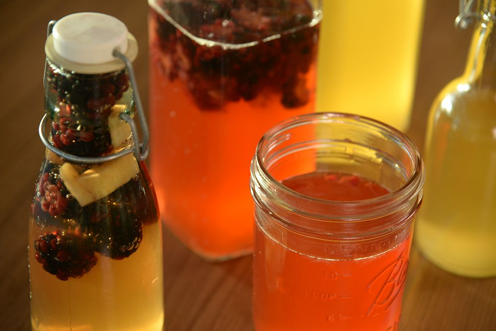 The popularity of kombucha in Denver is growing, so what exactly is it?