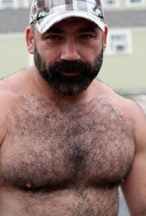 Burly bear hairy