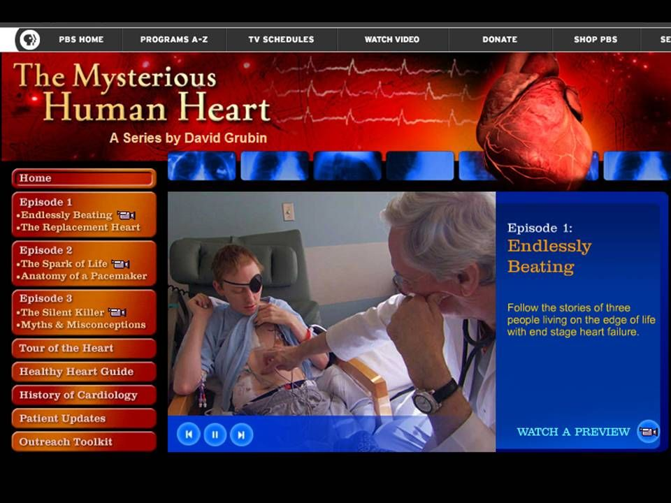 Pbs Site On The Hearteat Resource Of Infoeractive Tour Of