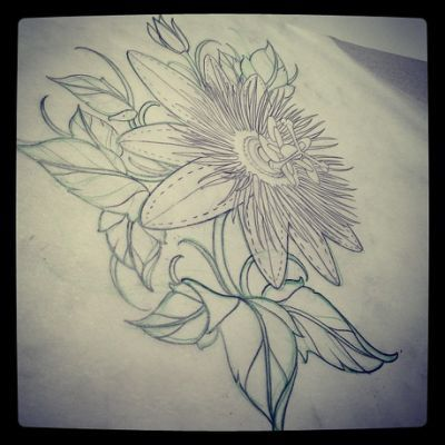 Passion Flower Flower Tattoo Passion Fruit Flower Black Tattoos