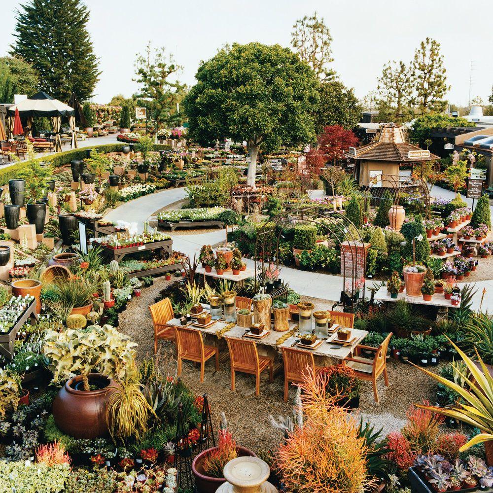 e1c4e0d70c4376d8b72ab35818757e4d - Botanical Gardens Corona Del Mar Ca