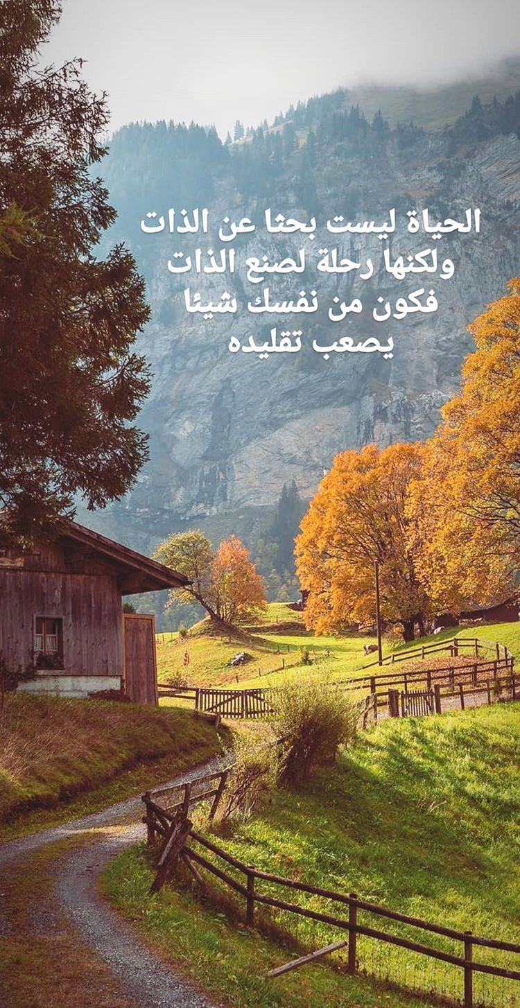 Pin By Rania Amin On Autumn Arabic Quotes Reassurance Quotes Arabic Love Quotes