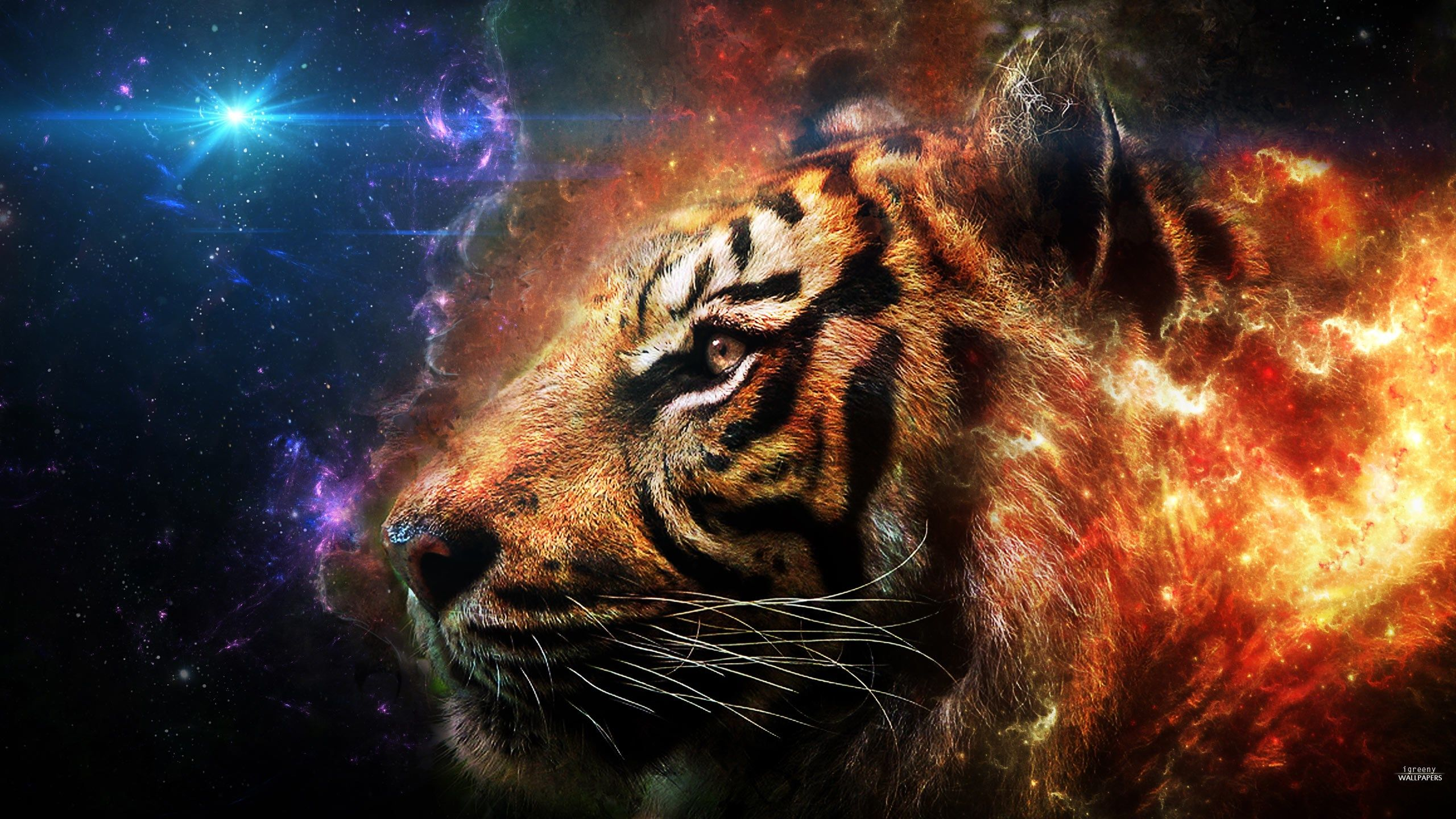 2560x1440 Free Desktop Backgrounds For Tiger Scream Tiger