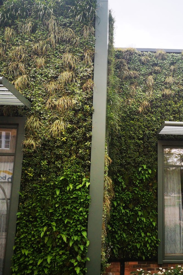 Beautiful Facade Contrast With A Living Vertical Garden At Studley