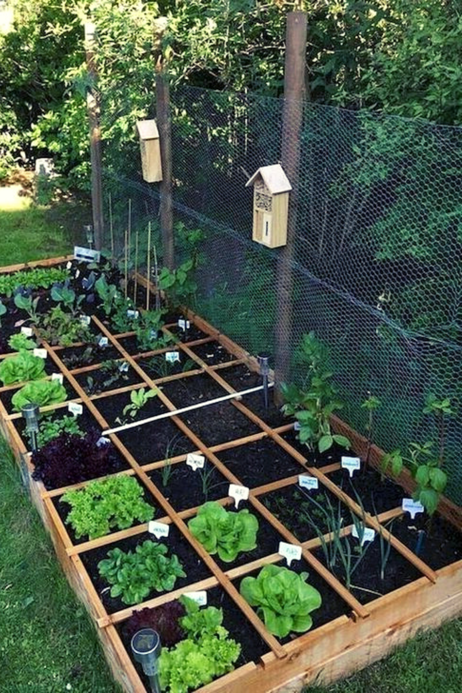 Ideas For A Great Diy Vegetable Garden Frugal Living Garden Boxes Raised Vegetable Garden Design Herb Garden Design