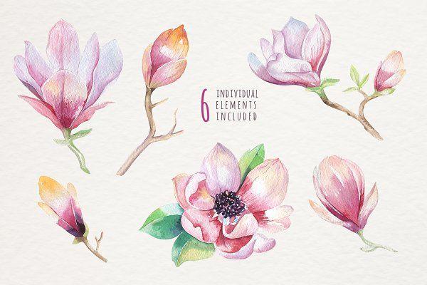 Watercolour Magnolia Floral Watercolor Magnolia Flower Magnolia Tattoo