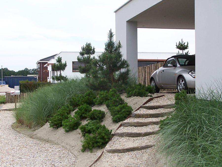 Strandtuin kamsteeg tuinen tuin gardens sloping