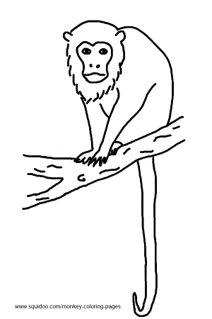 Howler Monkey Quiet Book Monkey Template Monkey Coloring Pages