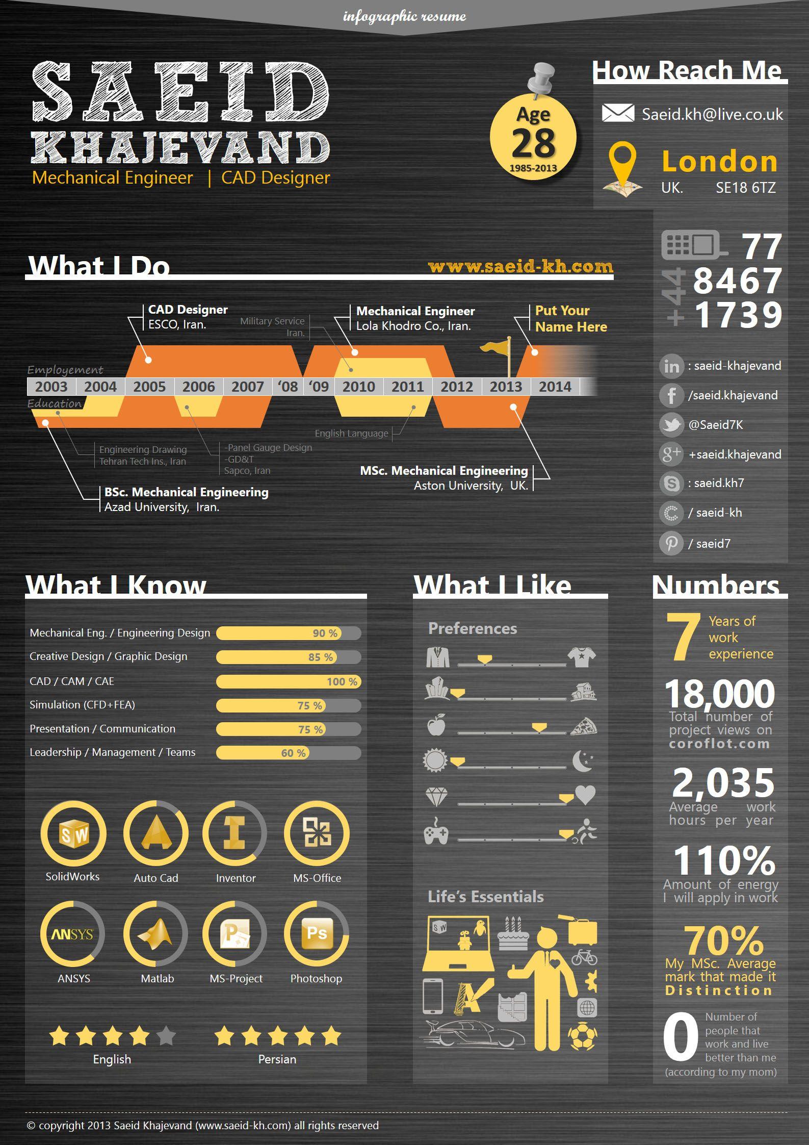 My infographic resume (06/2013) - Saeid Khajevand | My Graphic ...