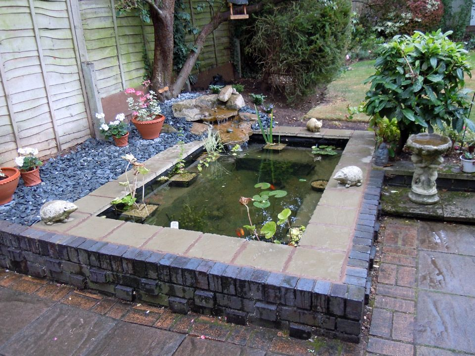 Garden Pond | This is a formal pond, slightly raised with ... on Raised Garden Ponds Ideas id=58670