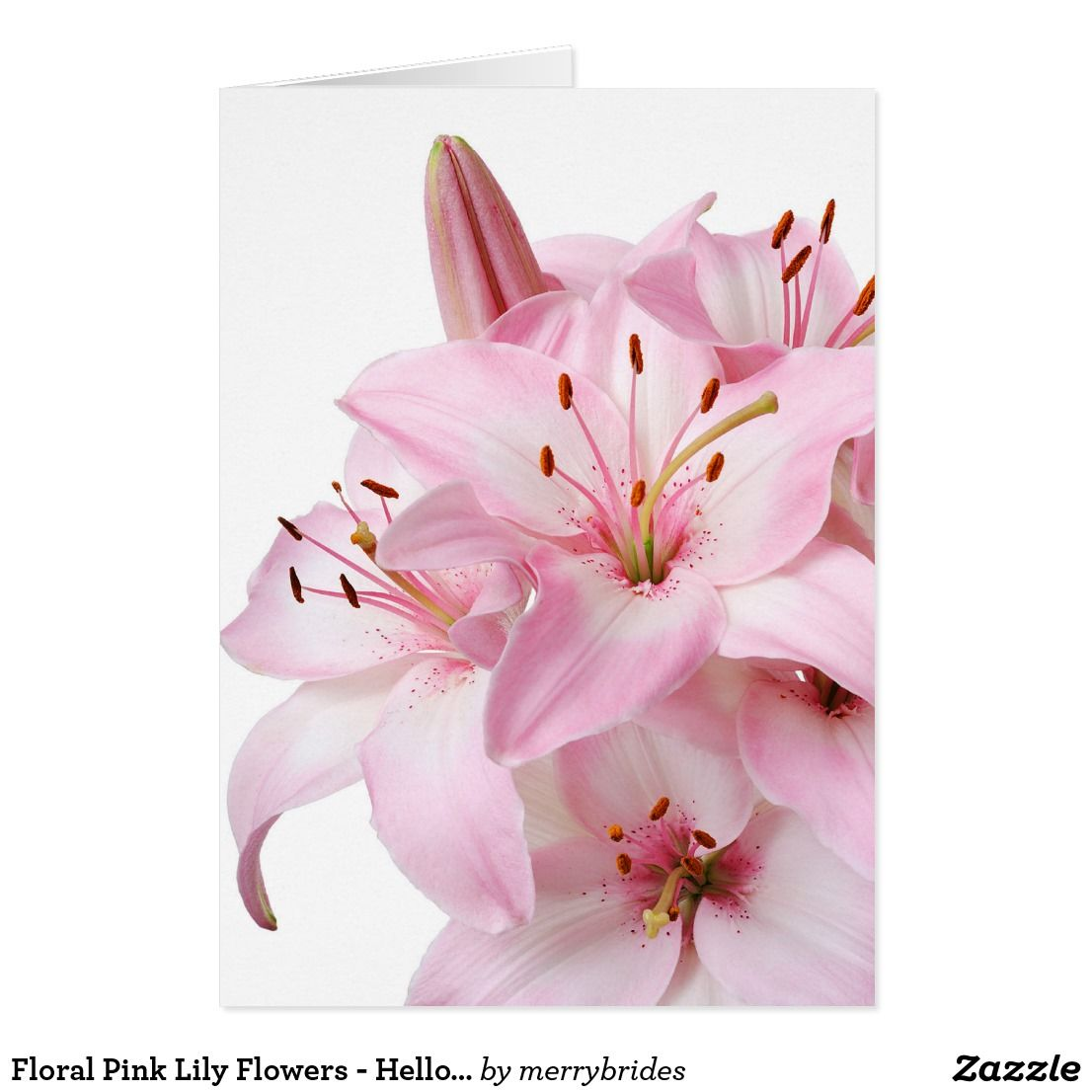 Floral Pink Lily Flowers Hello Love Thank You Pink Love