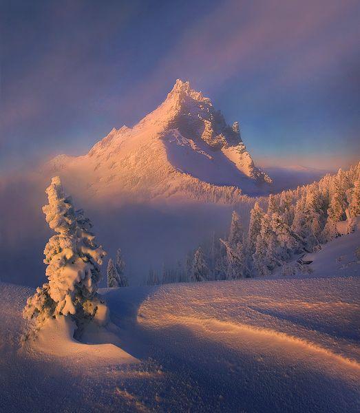 Красивые фотографии природы от Марка Адамуса | ФОТО | Зима ...