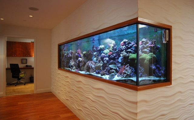 Simple 5 modern home fish tank on modern fish tank for Modern fish tanks