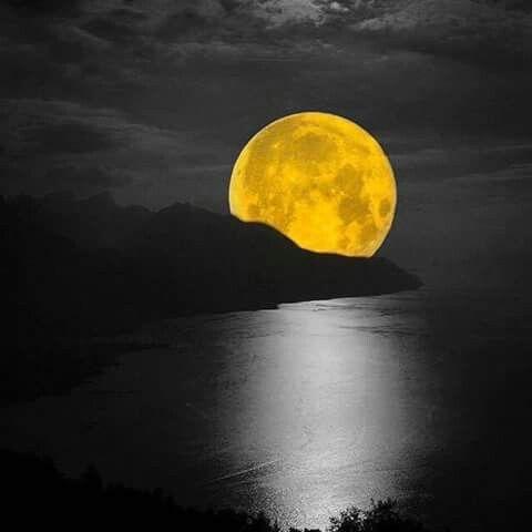 Luna de oro.