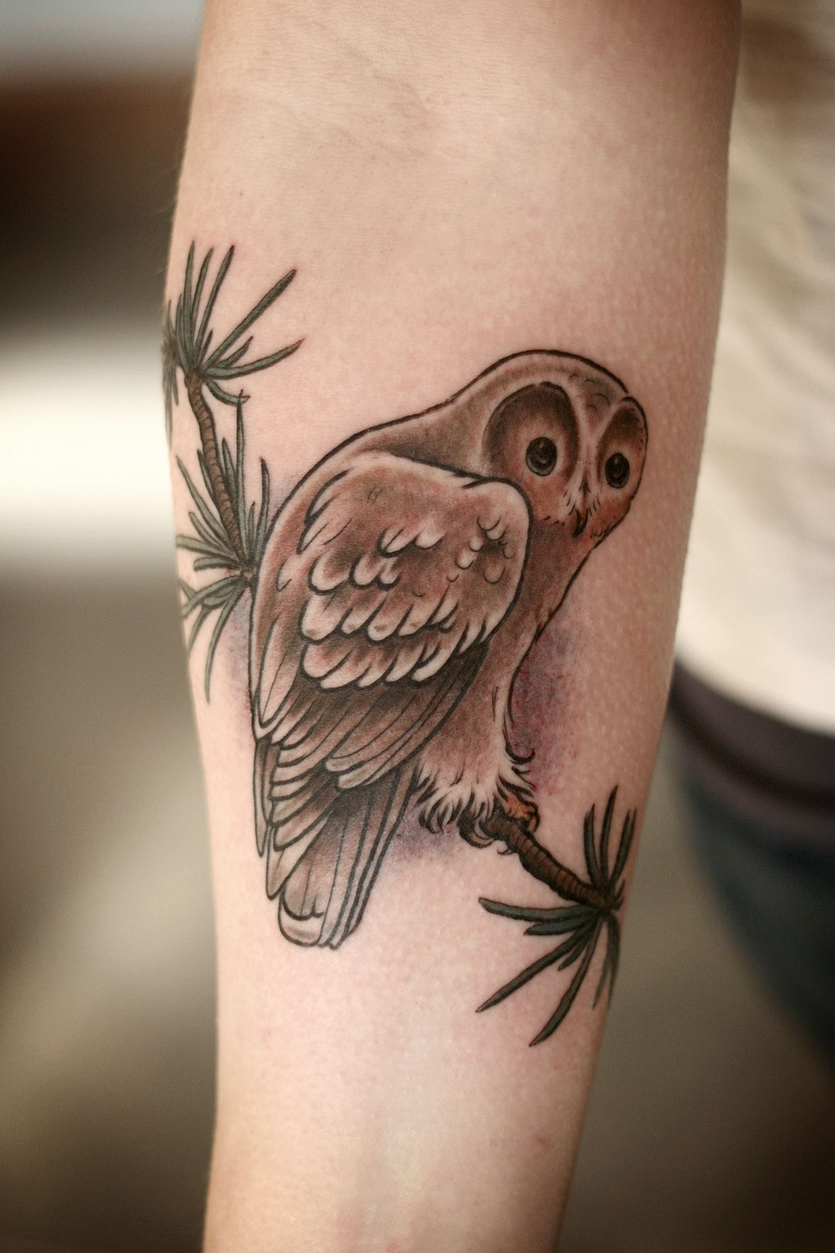 """alicecarrier """"Cute little owl and pine bough """" Tattoo by"""
