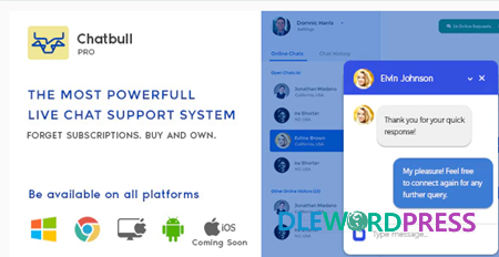 Get ChatBull Pro v5.2.0 PHP Live Chat Support with