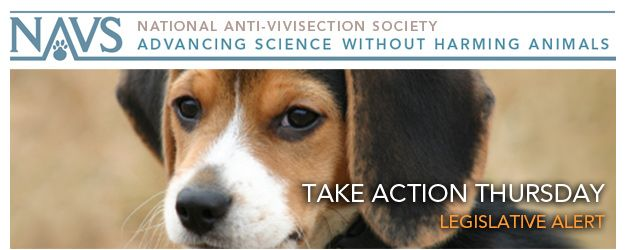 Petition The Puppy Uniform Protection And Safety Act Hr 847 And S