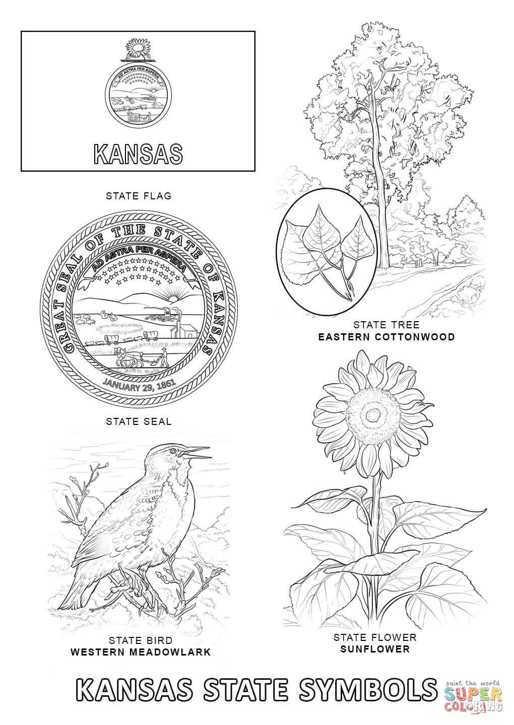 Kansas State Symbols Super Coloring State Symbols Kansas Day