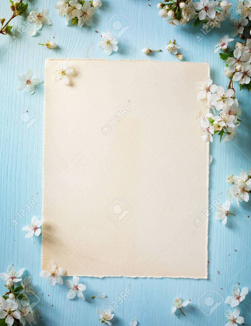 Art Spring border background with spring flowers