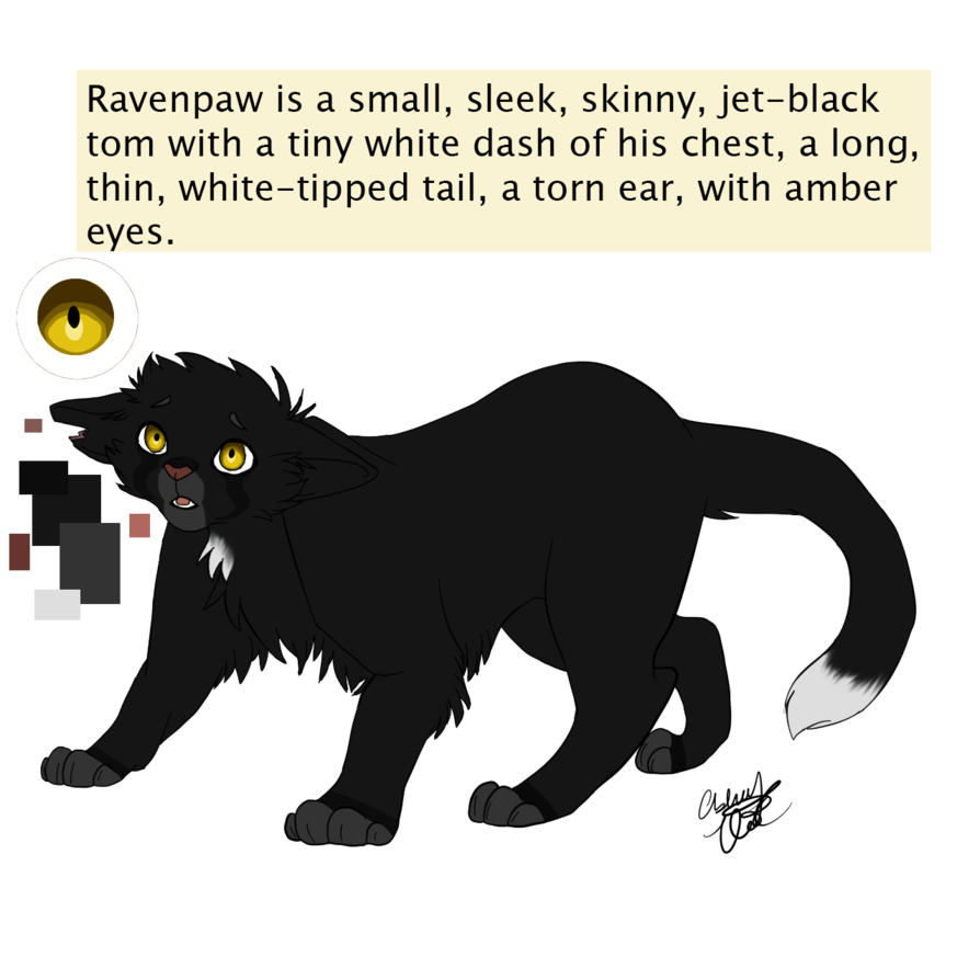 Ravenpaw By Purespiritflower Deviantart Com On Deviantart Warrior Cats Art Warrior Cats Books Warrior Cats