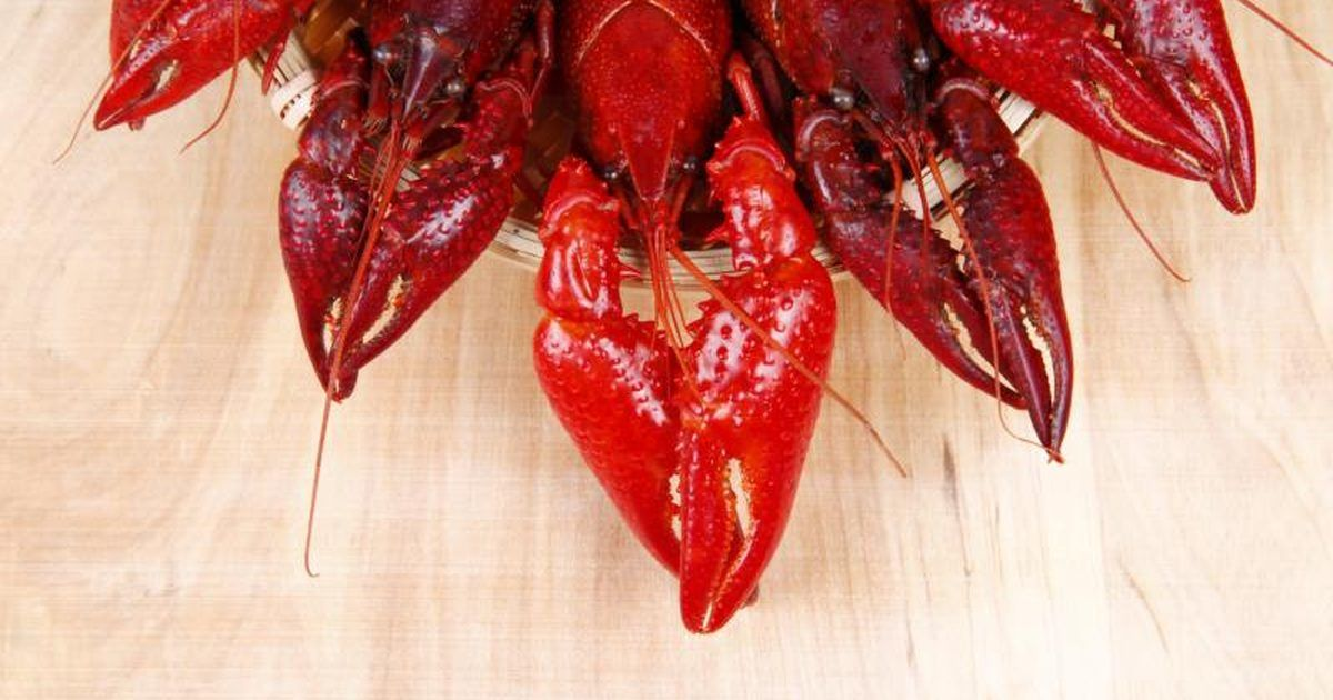 How to cook crawfish on the stove how to cook crawfish