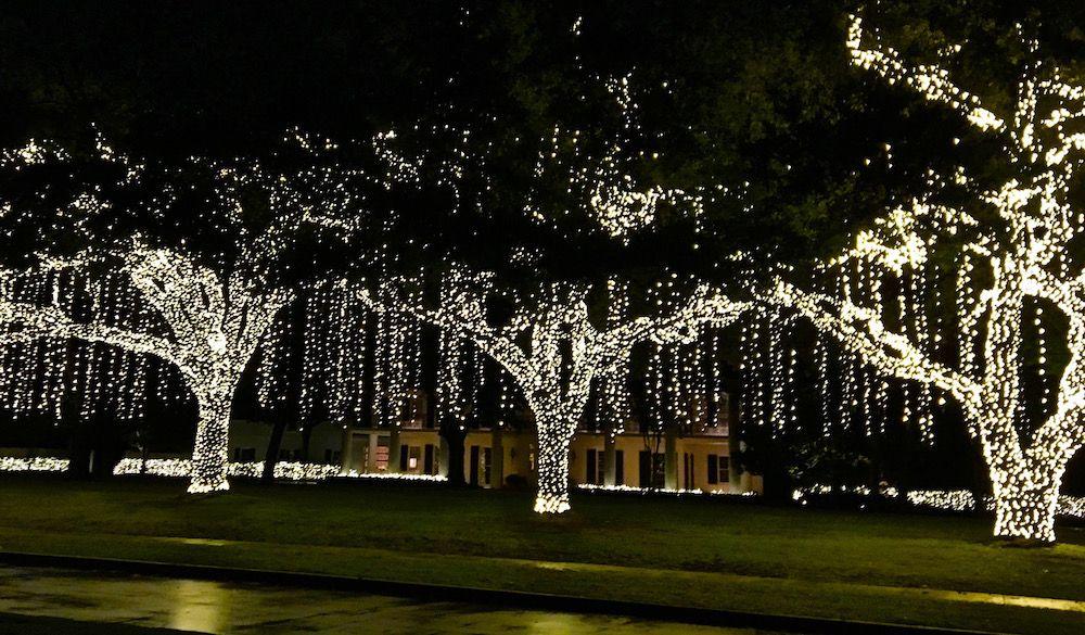 Holiday Lights In Houston 365 Houston Natal