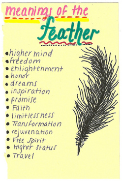 This Is Why I Want And Need A Feather Tat Meanings Of The Feather Natalie Jost Mccall I Decided On This Feather Tattoos Finding Feathers Feather Meaning