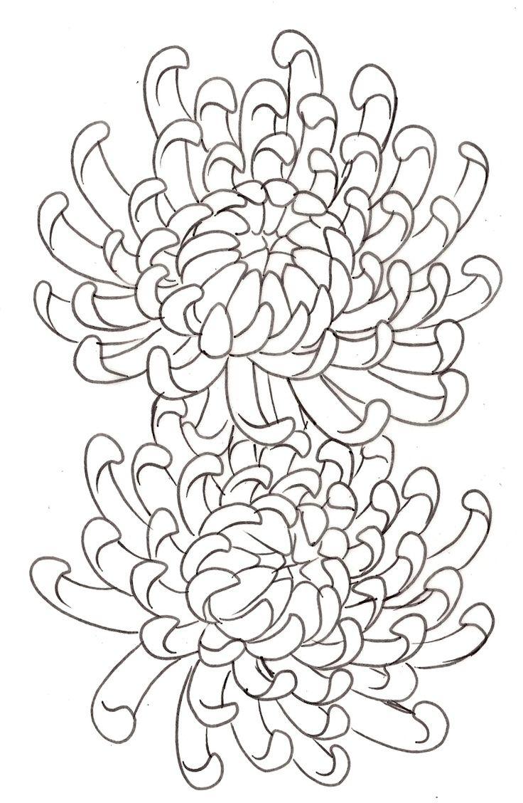 Chrysanthemum Flower Tattoo 14 By Metacharis On Deviantart Chrysanthemum Tattoo Flower Drawing Chrysanthemum Drawing