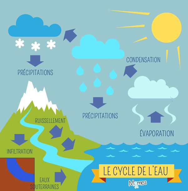 Le Cycle De Leau Sciences Pinterest Cycle De Leau
