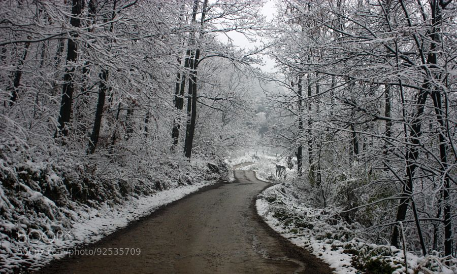 First snow winter 2014/15 by dare987