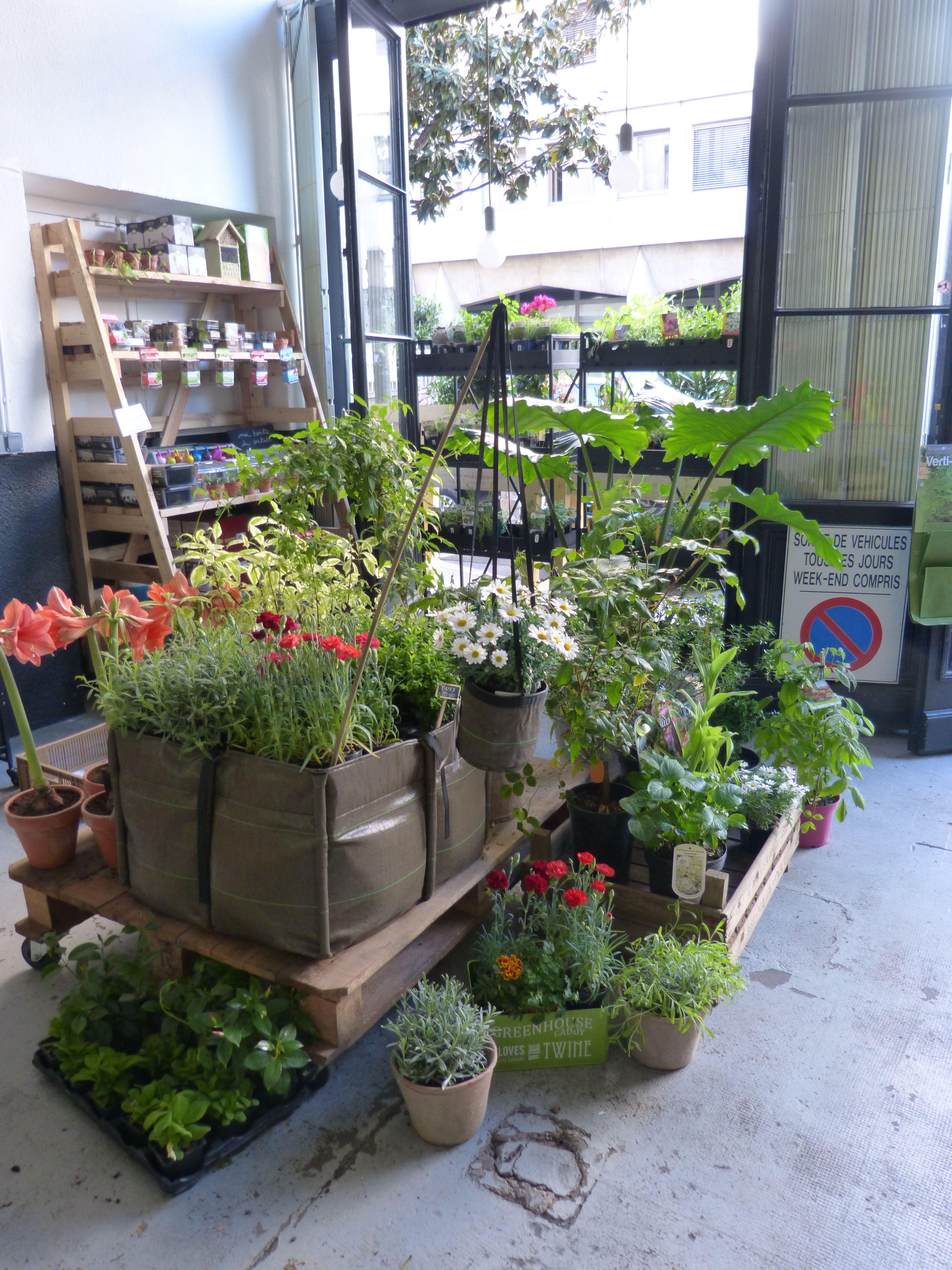 Un potager bacsquare bacsac o poussent de jolies fleurs for Boutique dans un jardin