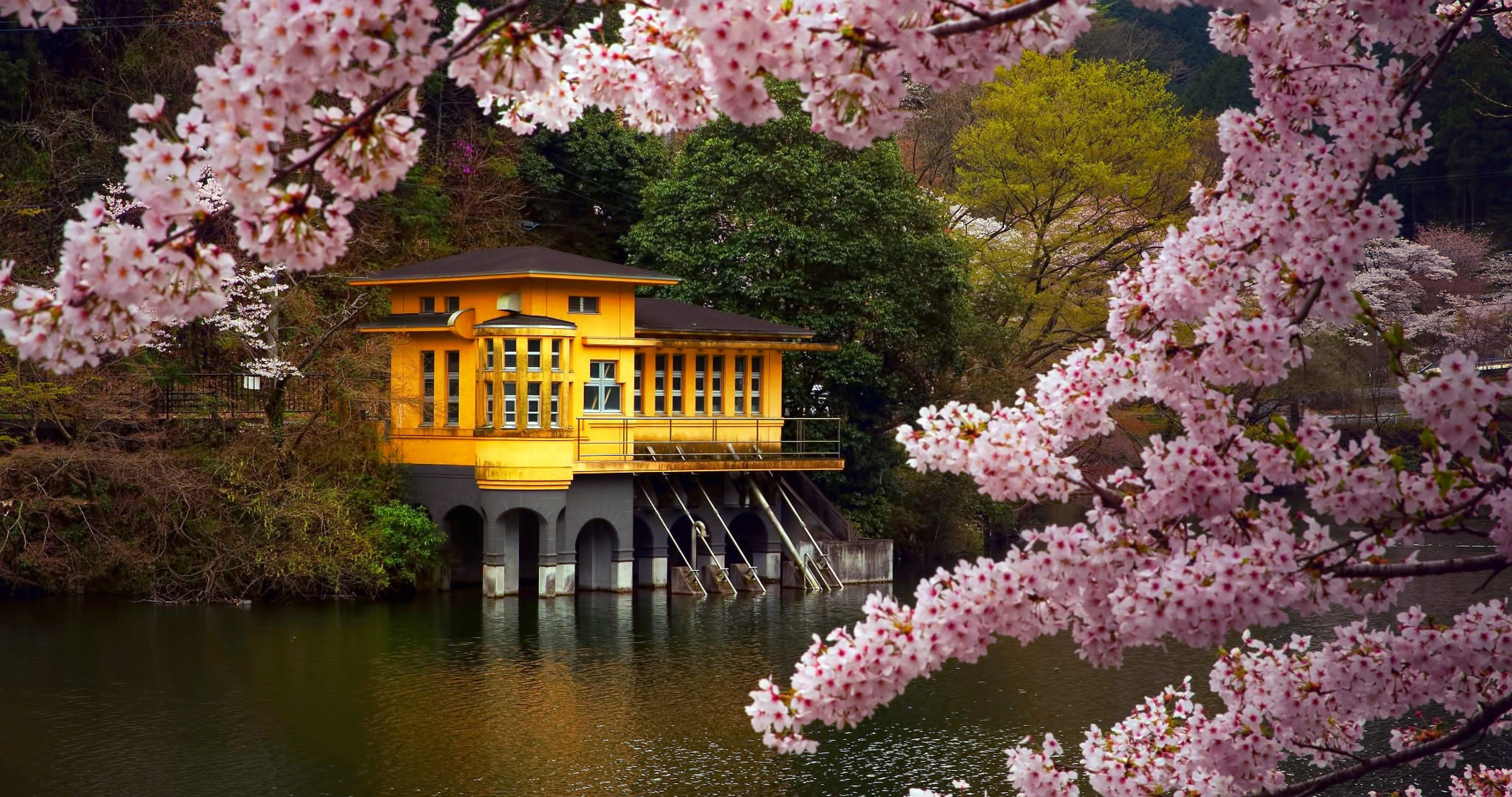 Japan Honshu Island 56 4k Ultra Hd Wallpaper Spring Desktop
