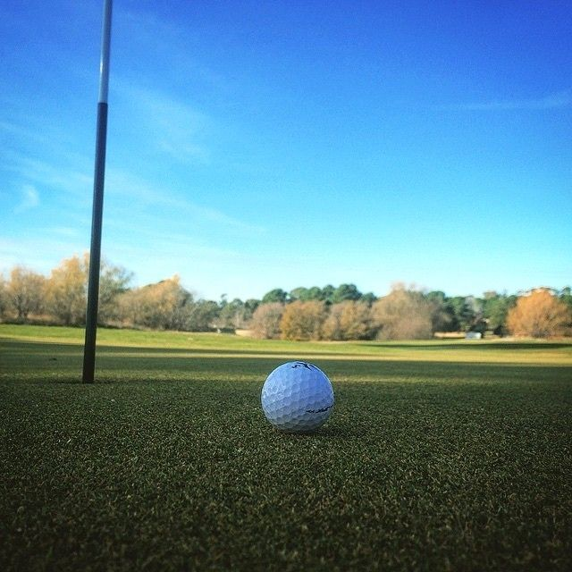 25+ Belconnen magpies golf membership viral