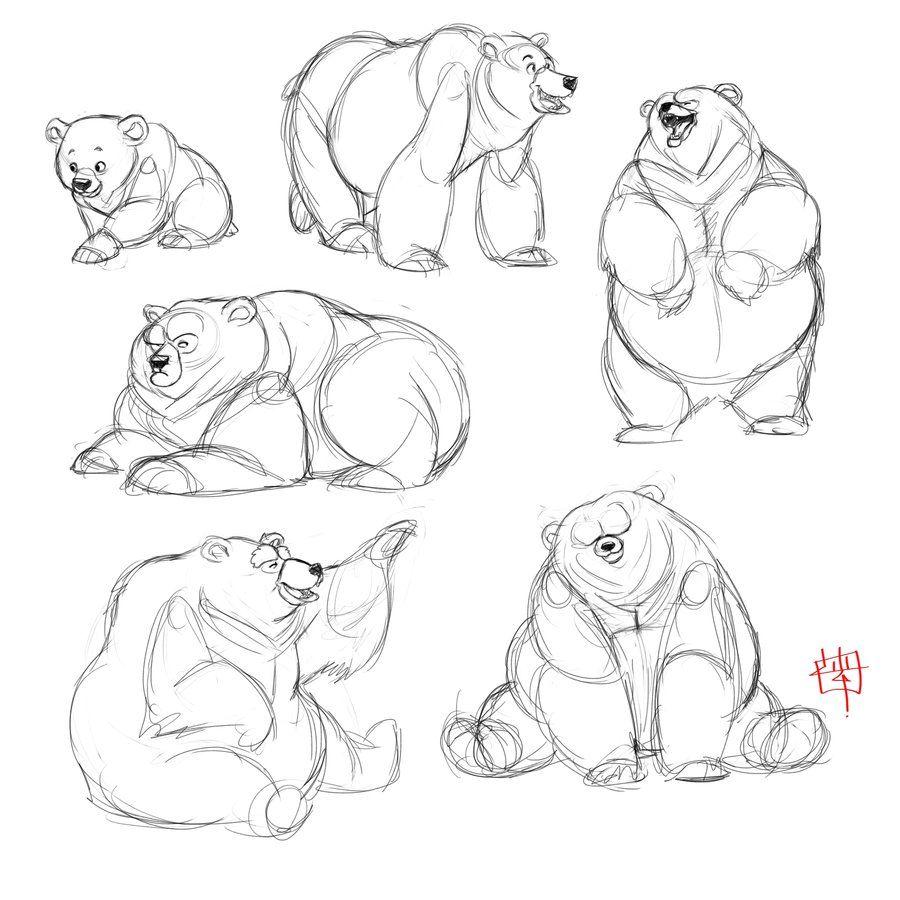 Bear study sketches by *LuigiL on deviantART
