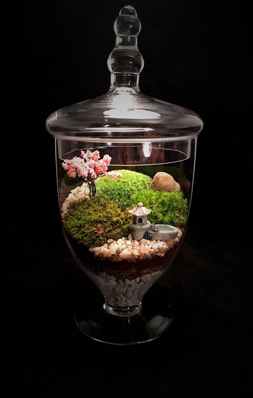 Landscape terrarium moss terrarium terrarium zen