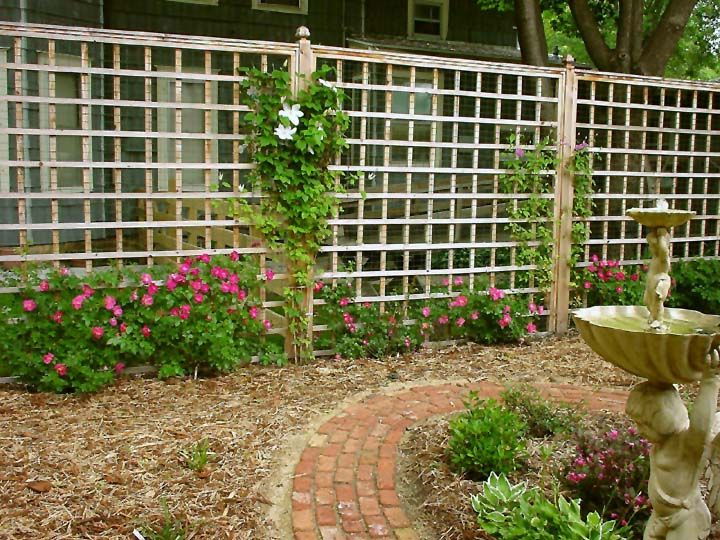 Great way of adding privacy to your yard | Unique gardens ...