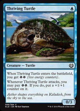 KLD 4x MTG: Thriving Turtle Magic Card Kaladesh Blue Common