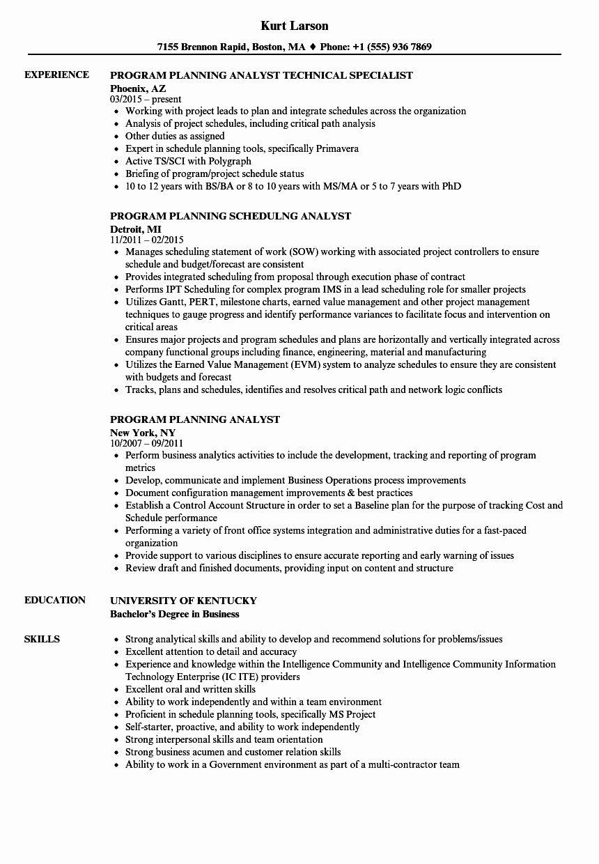 32+ Program analyst resume objective Resume Examples