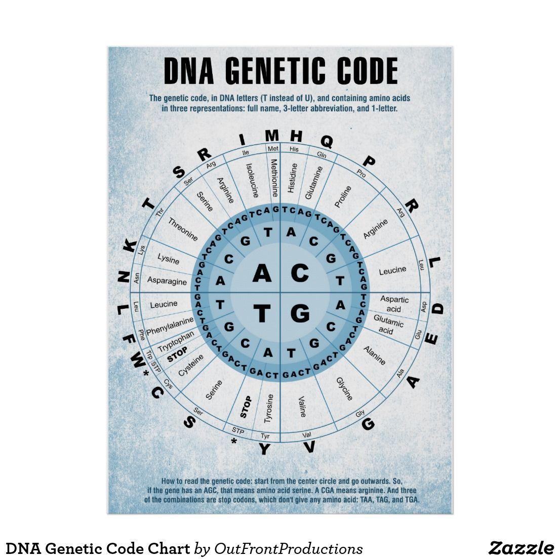 Definition Of Gene Code