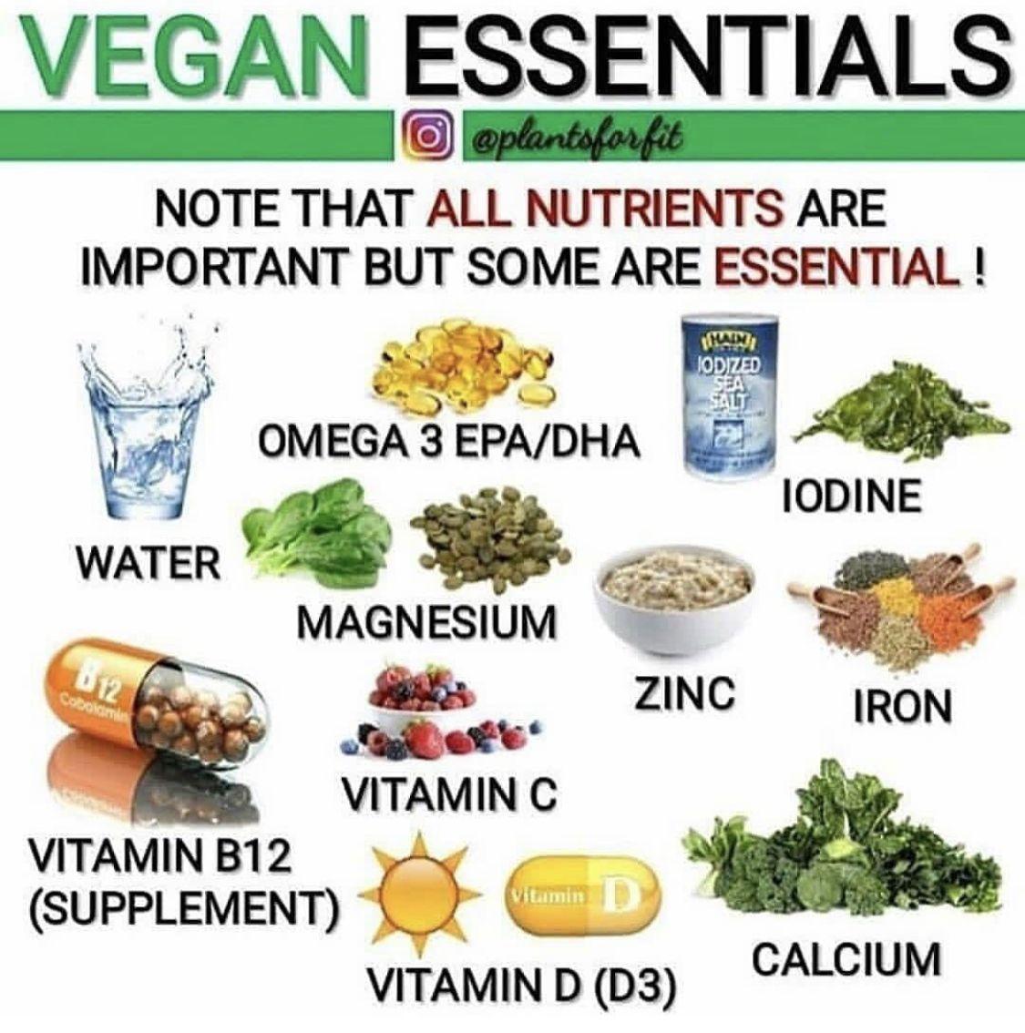 Pin By Svetlana Morgun On Vegan Resources In 2020 Vegan Essentials Calcium Vitamins Vegan