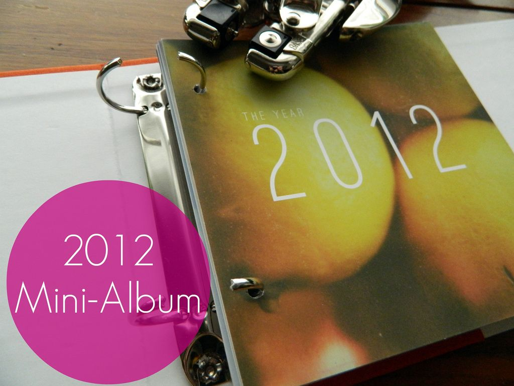2012 Mini Album from Campfire Chic / Lemon & Raspberry