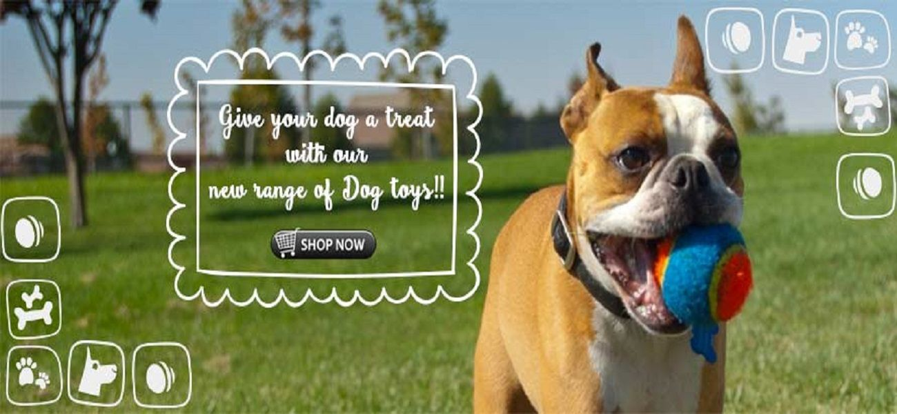 We At Pet Club India Aim To Provide Delivery Of The Widest Range Of Pet Products Providing All Of Our Customers Online Pet Supplies Online Pet Store Buy Pets
