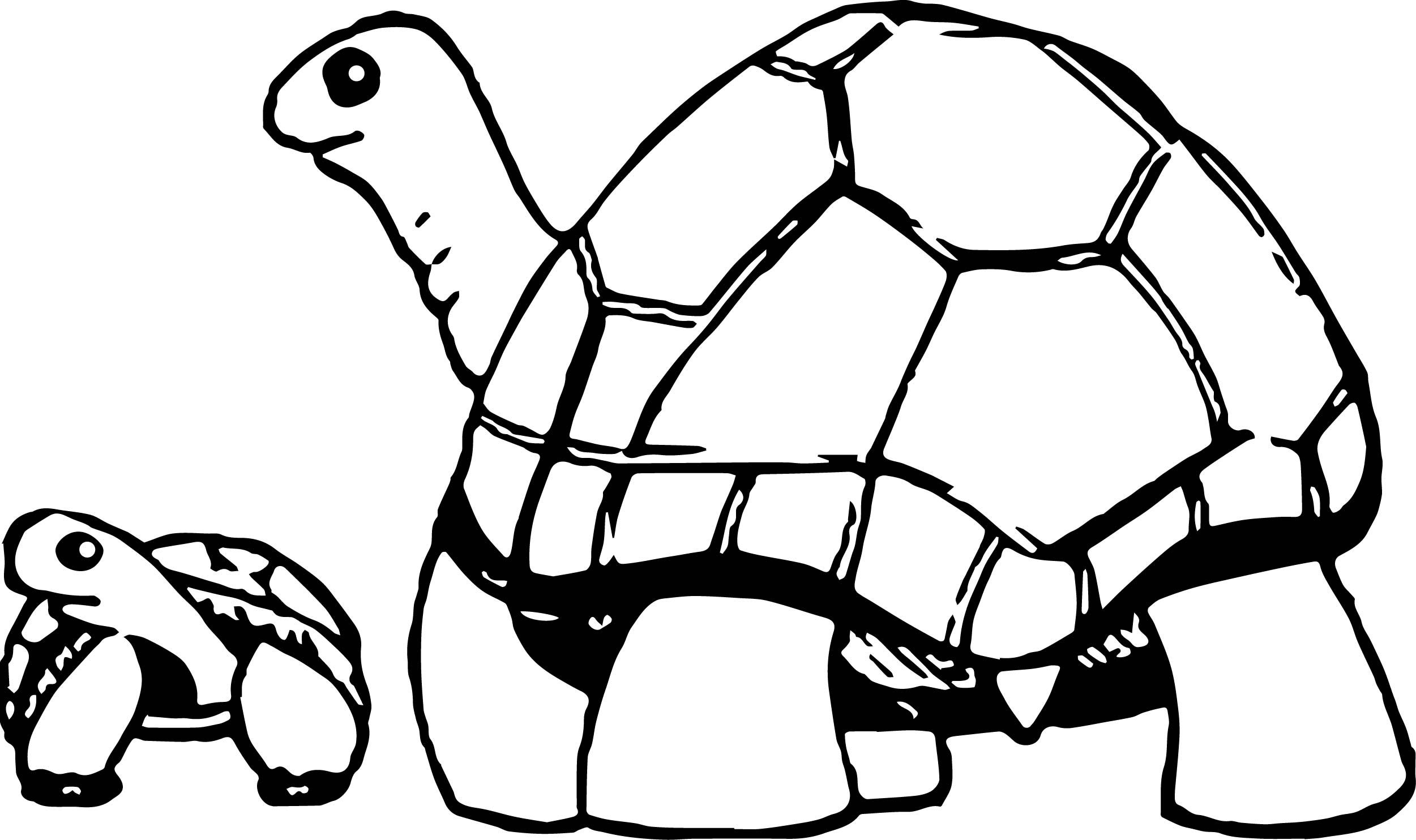 Awesome mother and baby tortoise turtle coloring page