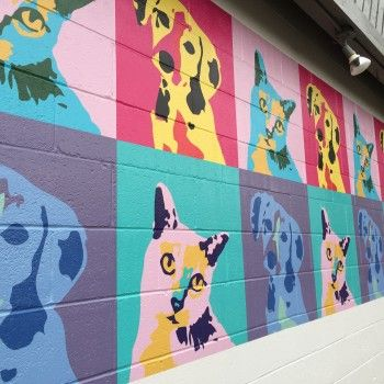 Creekside Vet Clinic Wall Wraps Pet Clinic Vet Clinics Veterinary Hospital