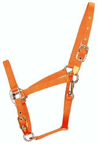 $27.37-$32.54 The Hamilton Halter is a picture of strength and beauty that has been widely accepted by horse owners throughout America. Each halter is made of over 16 feet of 100% nylon web, double sewn and triple-thick. Its 100% nylon thread is sewn in a diamond tack design to give the halter form and rigidity for a superior fit. It is dramatically stronger than stitching in a single line or wit ...