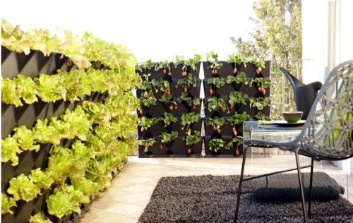 love the vertical garden - feasible on our new roof top? decore